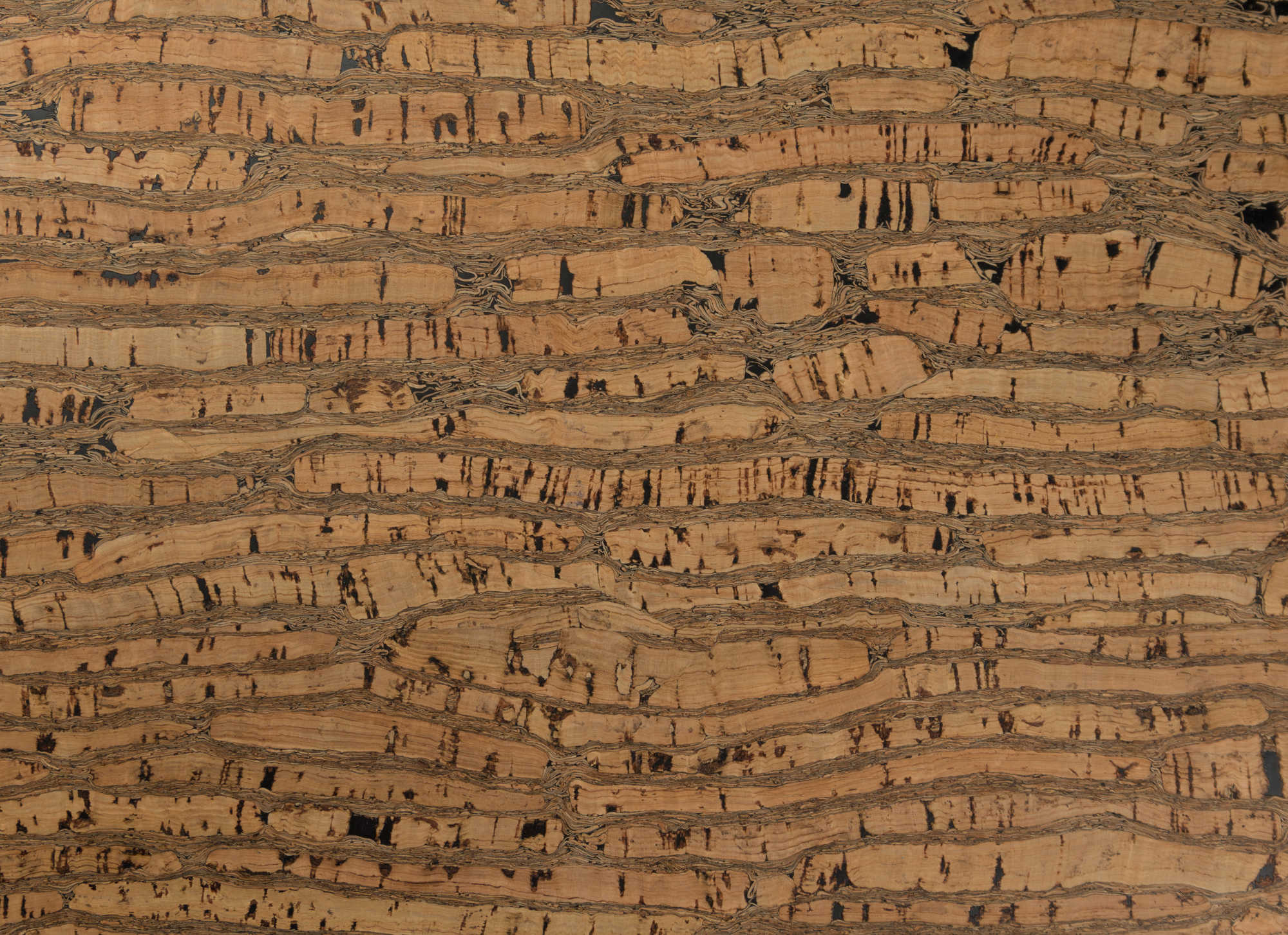 cork fabric header image